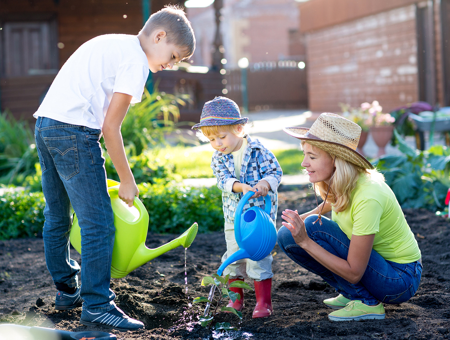Learn About Math in Gardening