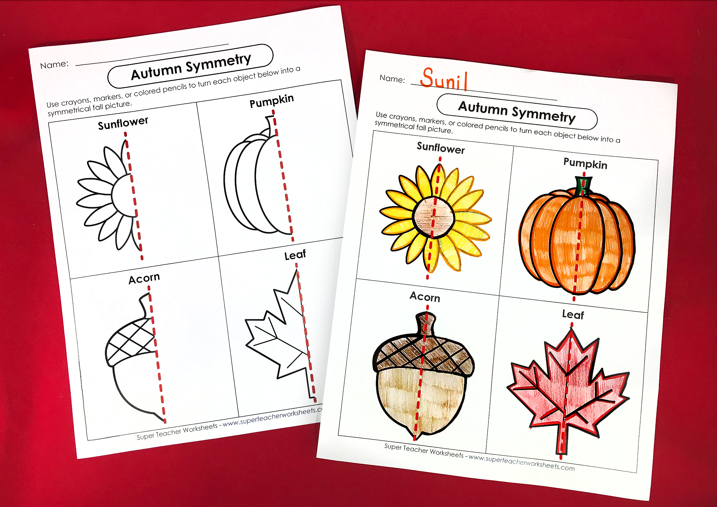 Autumn Symmetry Worksheet